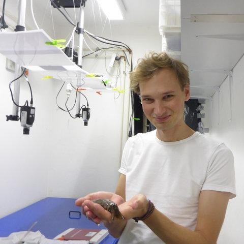 Albrecht Vorster mit Meeresschnecke