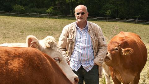 Franz Keller mit seinen Kühen.