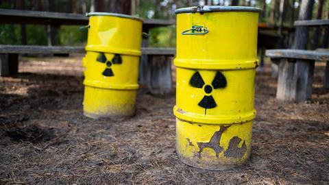 Symbolische Atommüllfässer stehen unweit vom ehemaligen Erkundungsbergwerk Gorleben im Wald.