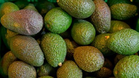 Ein Haufen Avocado