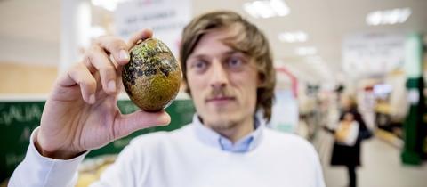 Sirplus-Geschäftsführer Raphael Fellmer hält eine Avocado mit fleckiger Schale in die Kamera.