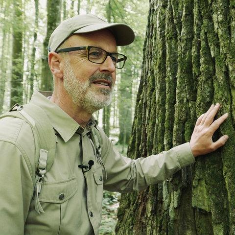 Peter Wohlleben im Wald