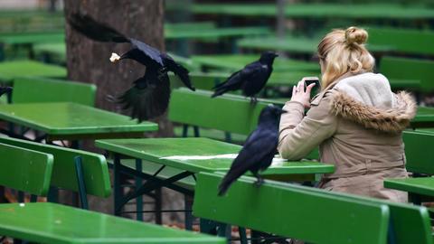 Eine Krähe stibitzt in einem Biergarten einer jungen Frau ein Stück von der Brezel