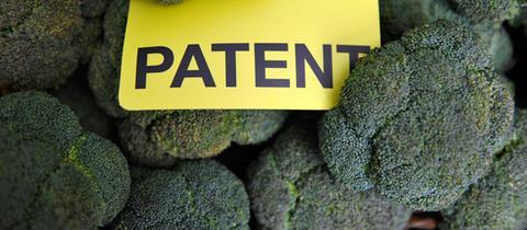 """Ein gelbes Schild mit der Aufschrift """"Patent"""" zwischen Brokkoli-Röschen"""
