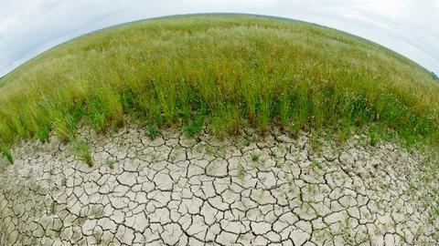 Trockener Boden neben einem Feld in Nierdersachsen