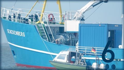 Senckenberg Forschungsschiff
