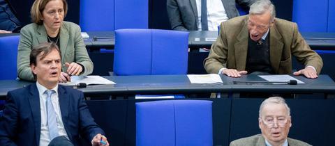 Die AfD-Fraktion im Bundestag