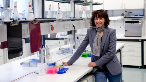 Emmanuelle Charpentier, Direktorin am Max-Planck-Institut für Infektionsbiologie in Berlin