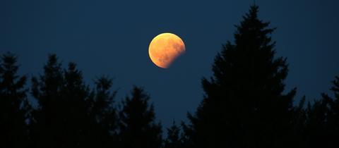 Der teilweise vom Erdschatten verdunkelte Vollmond steht am Himmel über einem Wald.