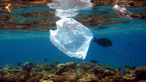 Eine Plastiktütw schwimmt im Meer