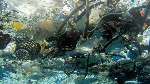 Plastikmülll treibt im Ozean