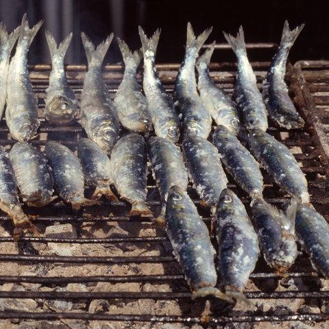 Sardinen liegen auf einem Grill