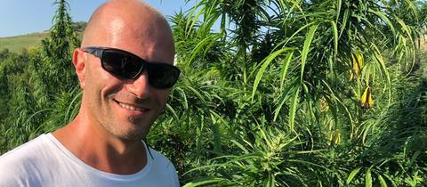Fabrizio Serafini auf seinem Cannabis-Feld