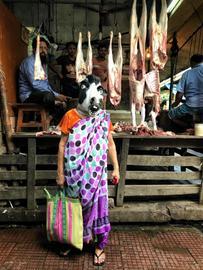 Sind Kühe in Indien mehr wert als Frauen?!