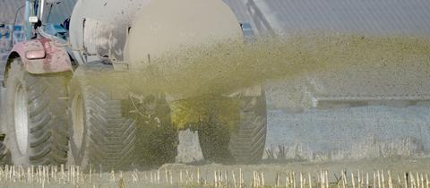 Ein Traktor mit Gülle-Anhänger versprüht Gülle auf einem Acker