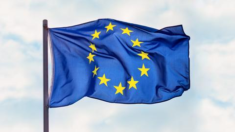Diskussion Europawahl