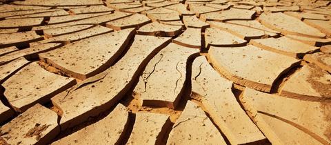 Forum Entrwicklung Wasserknappheit