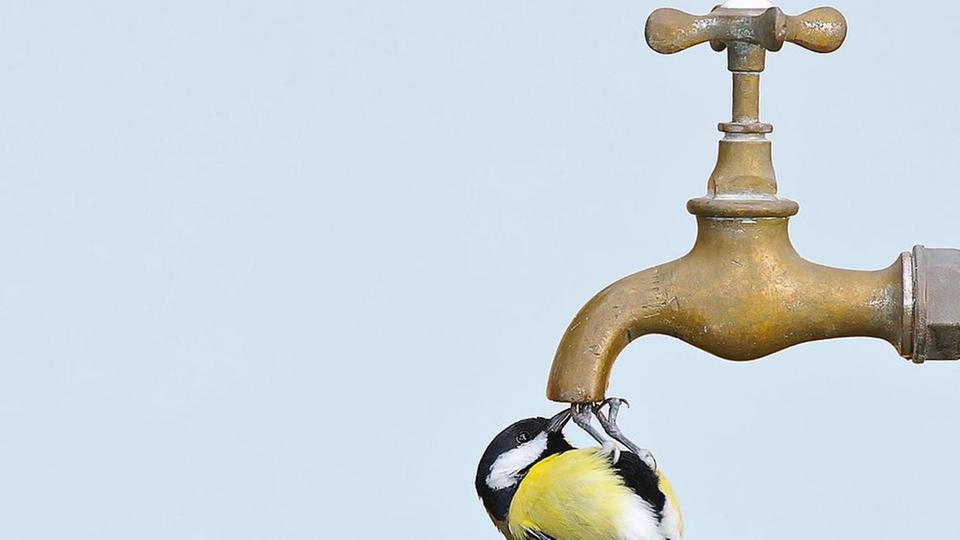 ISOE Wasser